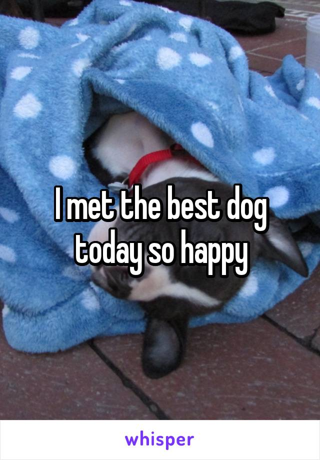 I met the best dog today so happy