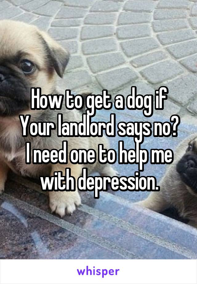 How to get a dog if Your landlord says no? I need one to help me with depression.