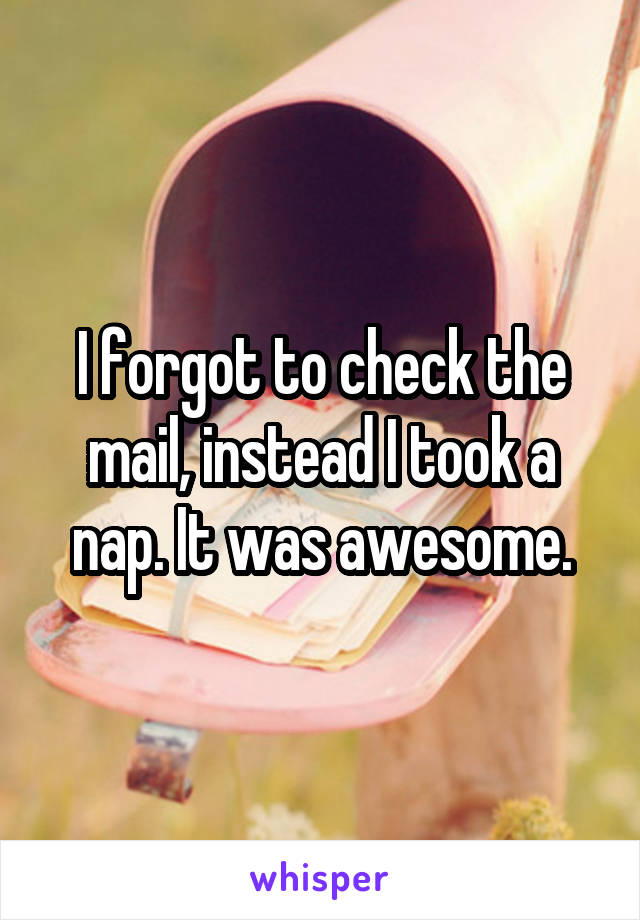 I forgot to check the mail, instead I took a nap. It was awesome.