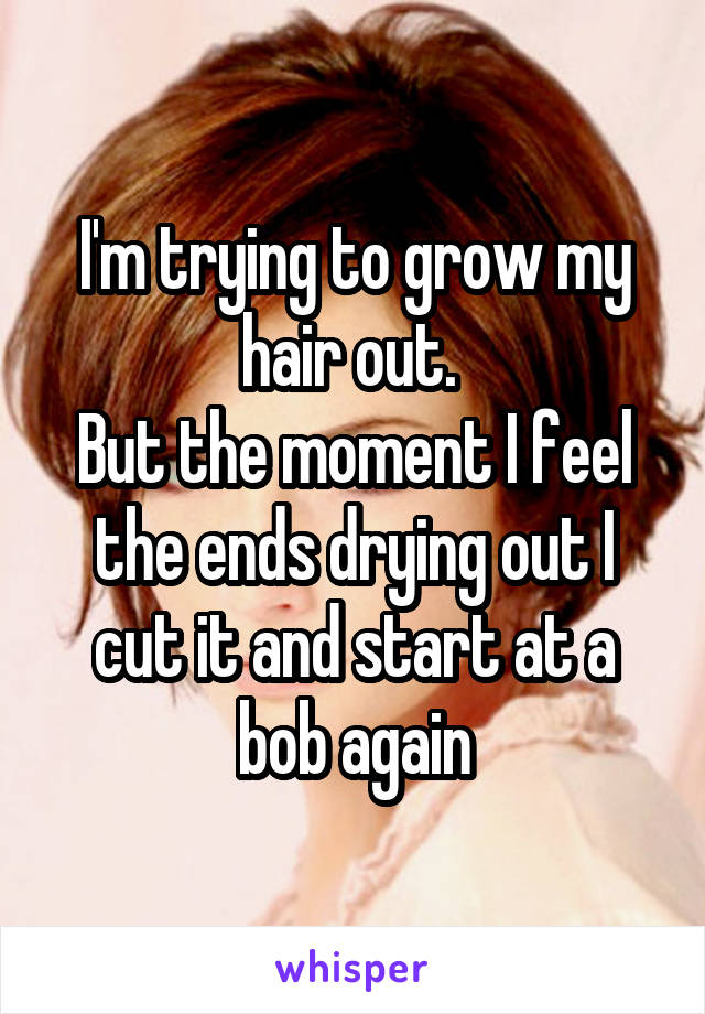 I'm trying to grow my hair out.  But the moment I feel the ends drying out I cut it and start at a bob again