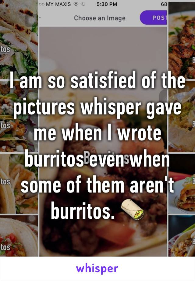 I am so satisfied of the pictures whisper gave me when I wrote burritos even when some of them aren't burritos. 🌯