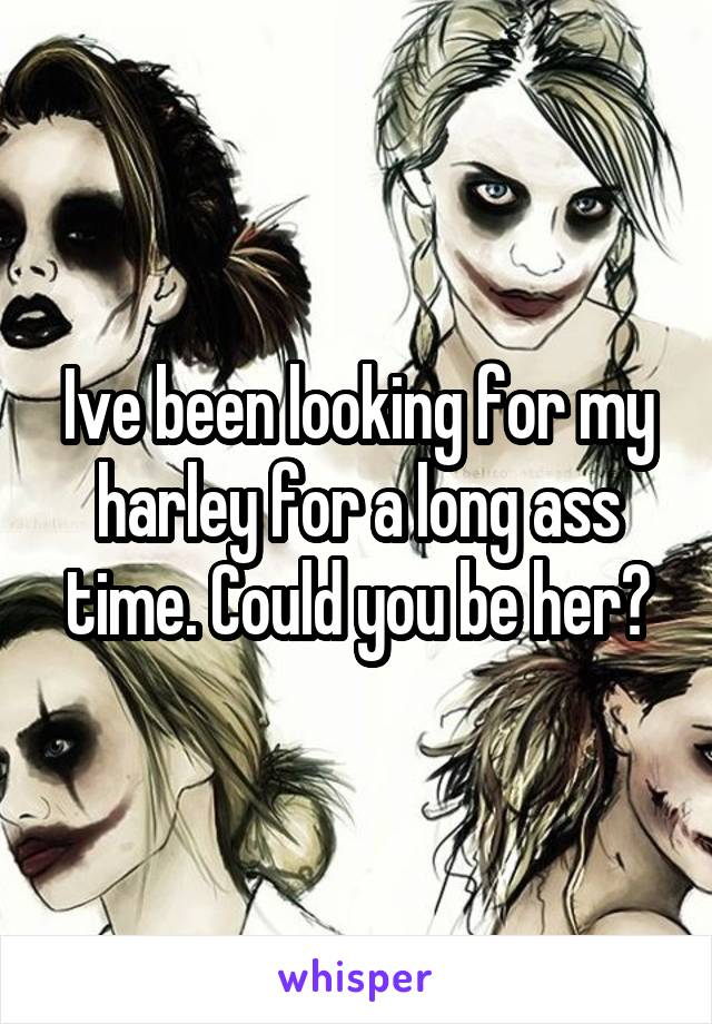 Ive been looking for my harley for a long ass time. Could you be her?