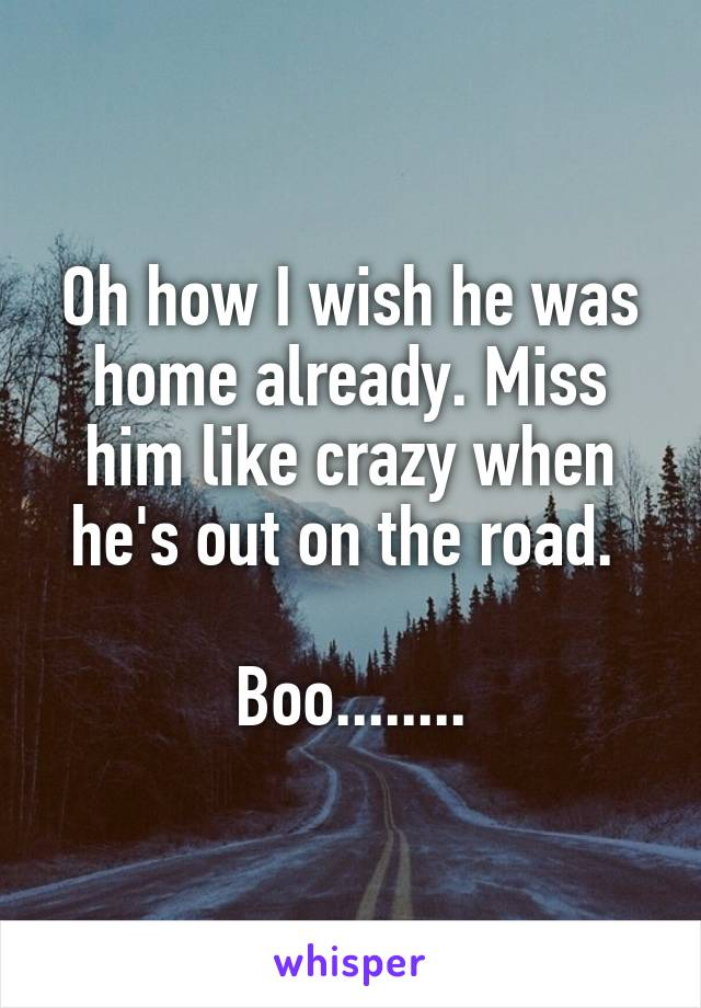 Oh how I wish he was home already. Miss him like crazy when he's out on the road.   Boo........