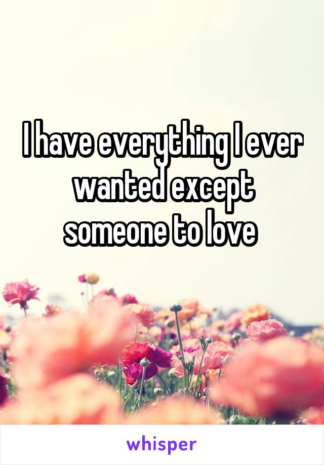 I have everything I ever wanted except someone to love