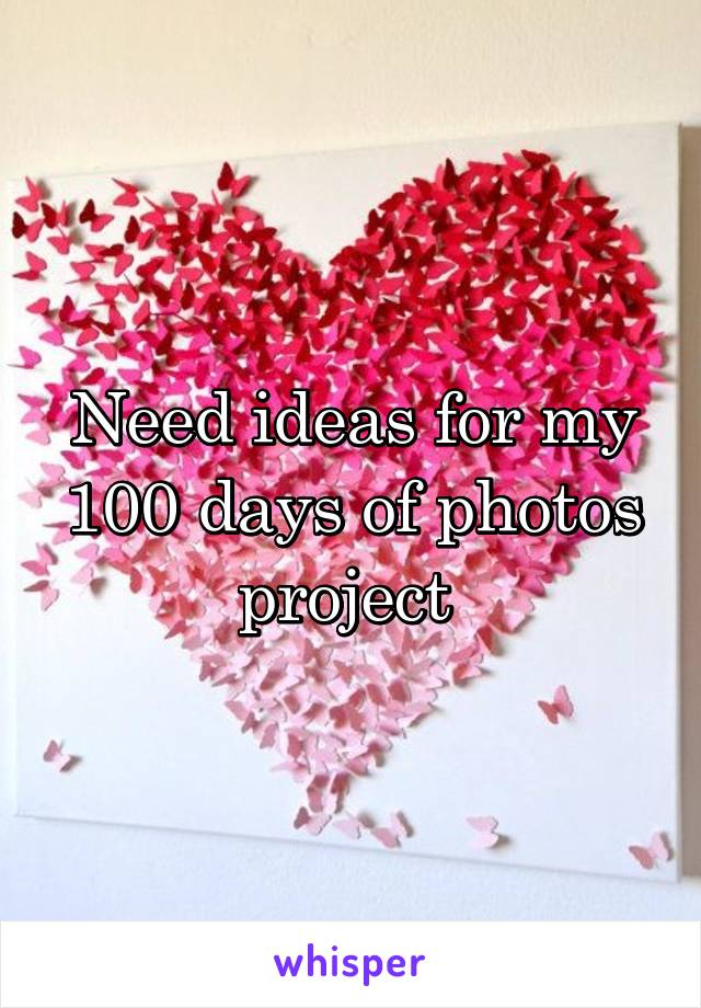 Need ideas for my 100 days of photos project