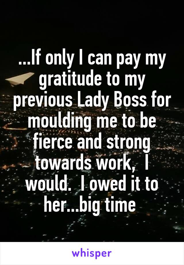 If Only I Can Pay My Gratitude To My Previous Lady Boss For