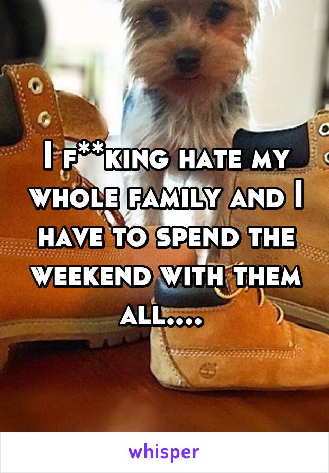 I f**king hate my whole family and I have to spend the weekend with them all....