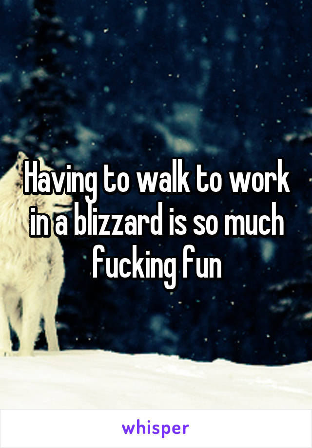 Having to walk to work in a blizzard is so much fucking fun