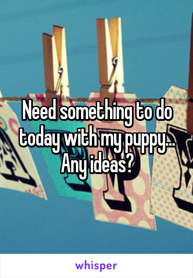 Need something to do today with my puppy... Any ideas?