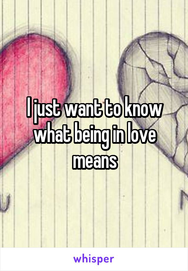 I just want to know what being in love means