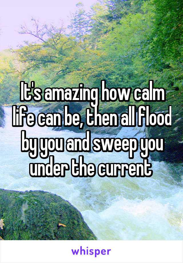 It's amazing how calm life can be, then all flood by you and sweep you under the current