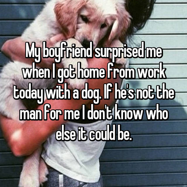 My boyfriend surprised me when I got home from work today with a dog. If he's not the man for me I don't know who else it could be.