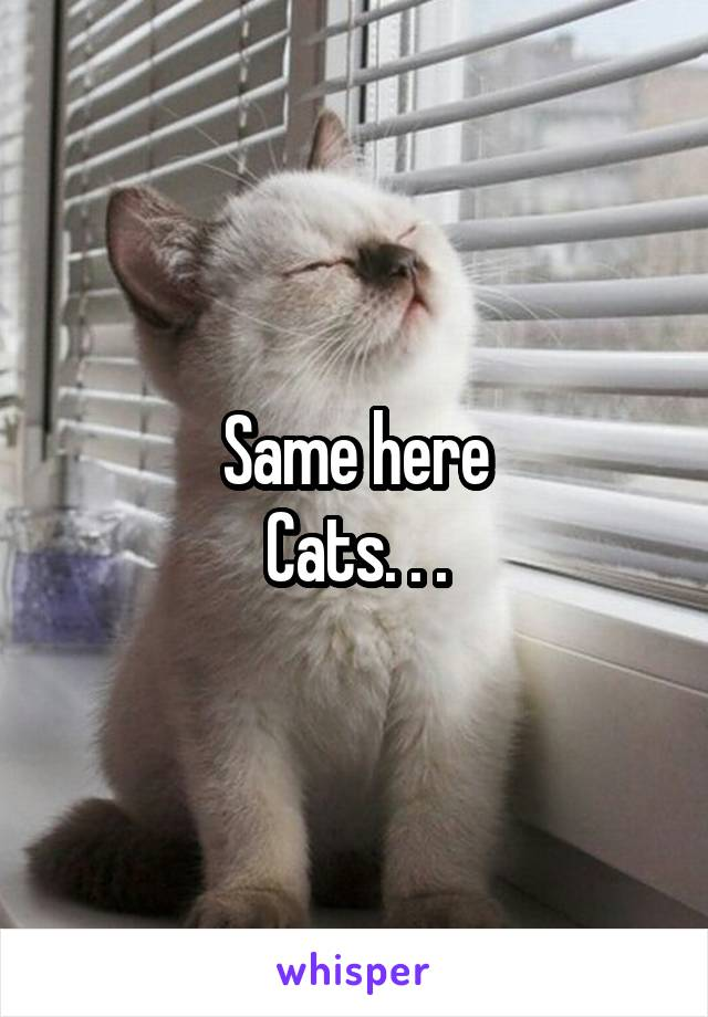 Same here Cats. . .