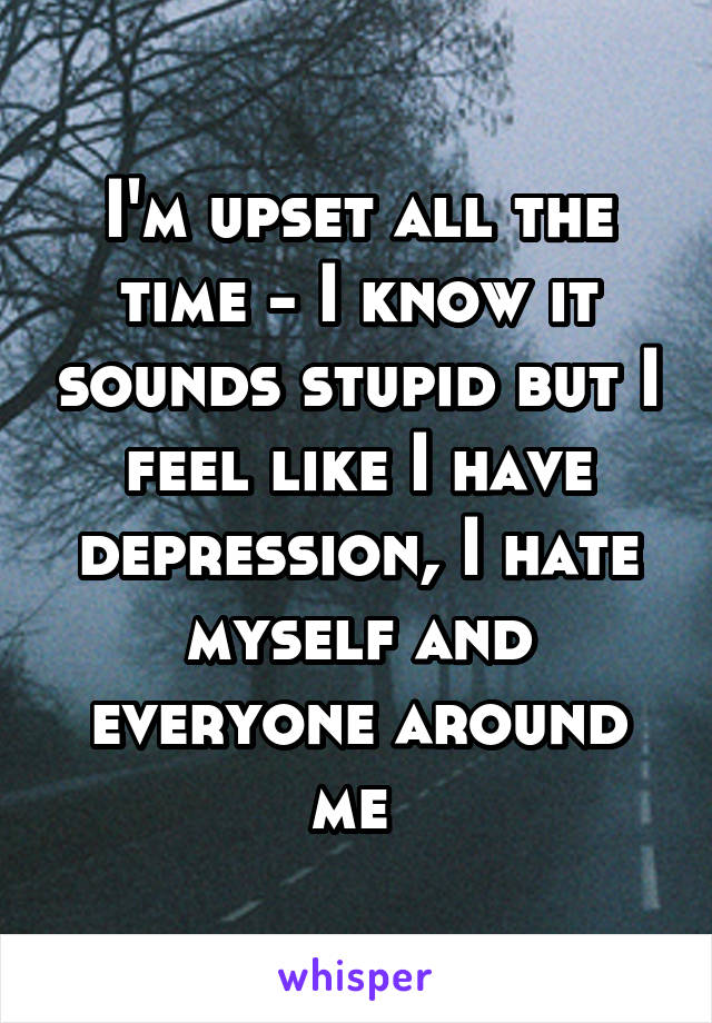 I'm upset all the time - I know it sounds stupid but I feel like I have depression, I hate myself and everyone around me