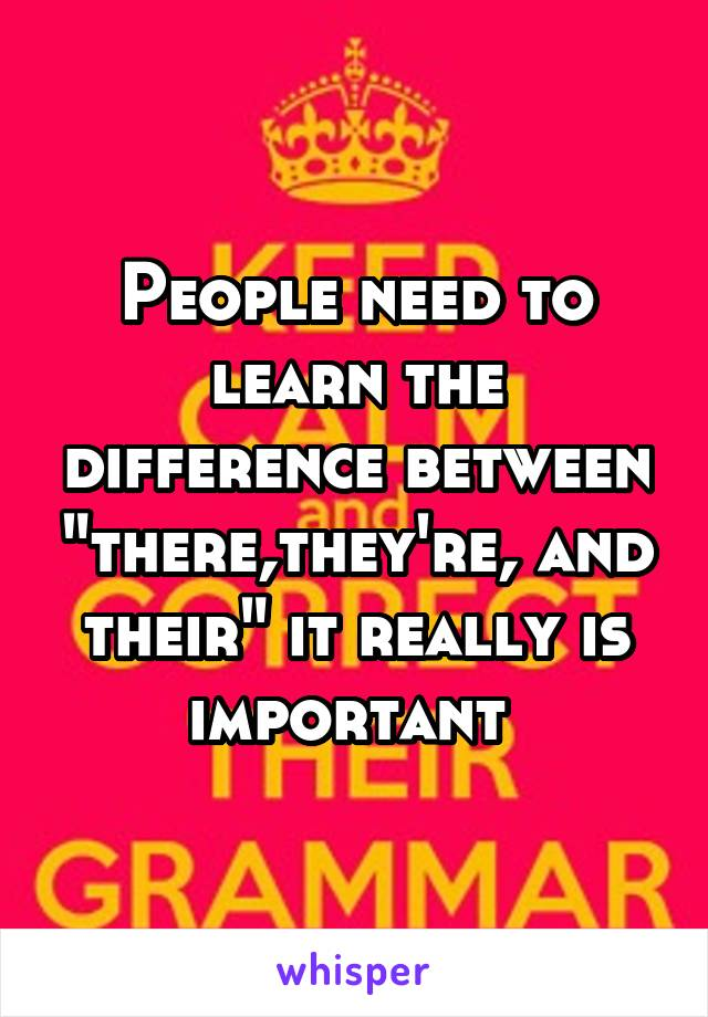 """People need to learn the difference between """"there,they're, and their"""" it really is important"""