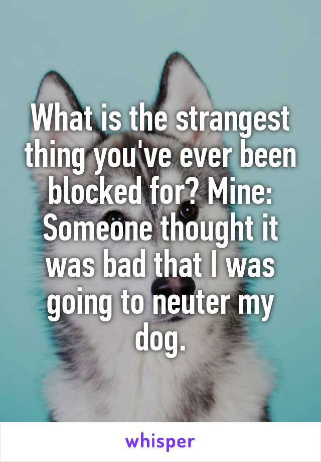 What is the strangest thing you've ever been blocked for? Mine: Someone thought it was bad that I was going to neuter my dog.