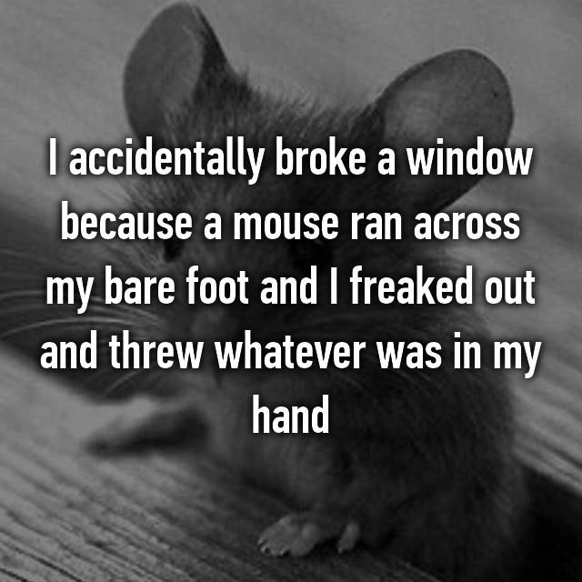 I accidentally broke a window because a mouse ran across my bare foot and I freaked out and threw whatever was in my hand