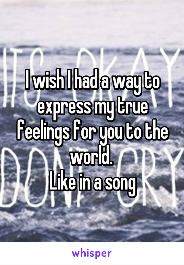 I wish I had a way to express my true feelings for you to the world.  Like in a song