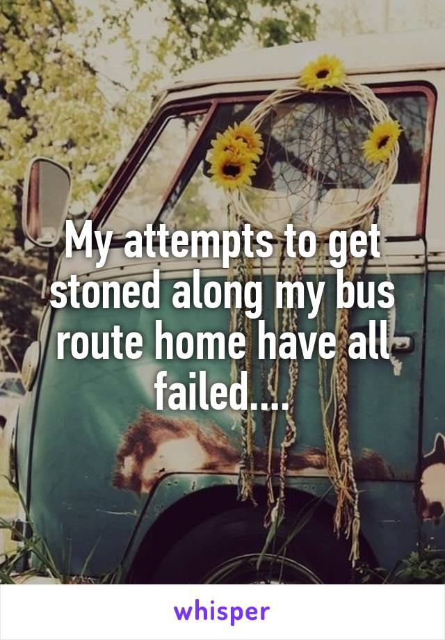 My attempts to get stoned along my bus route home have all failed....