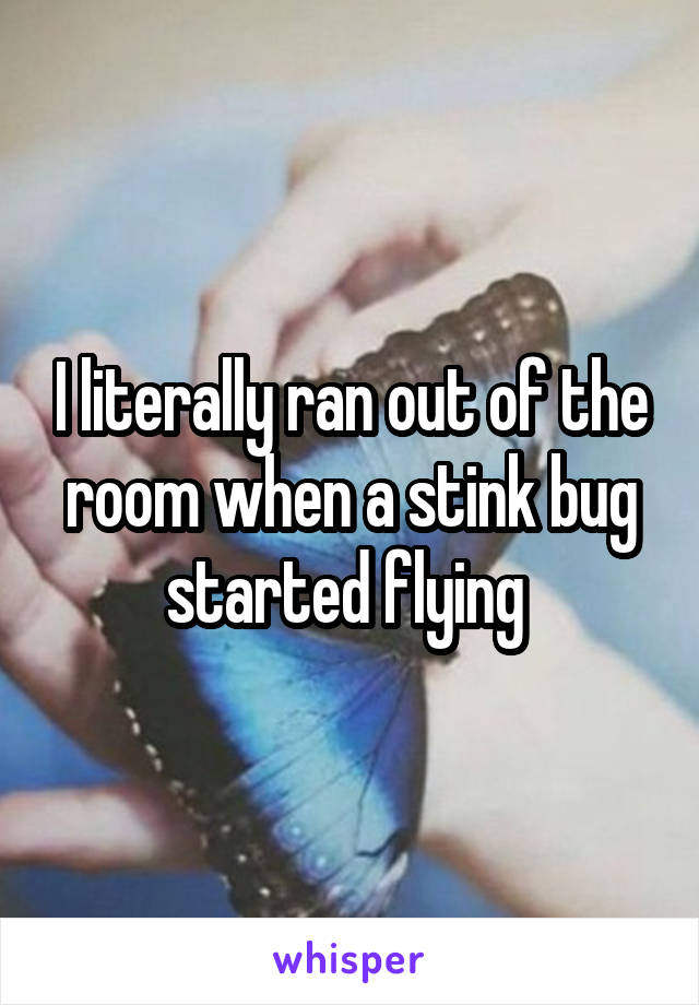 I literally ran out of the room when a stink bug started flying