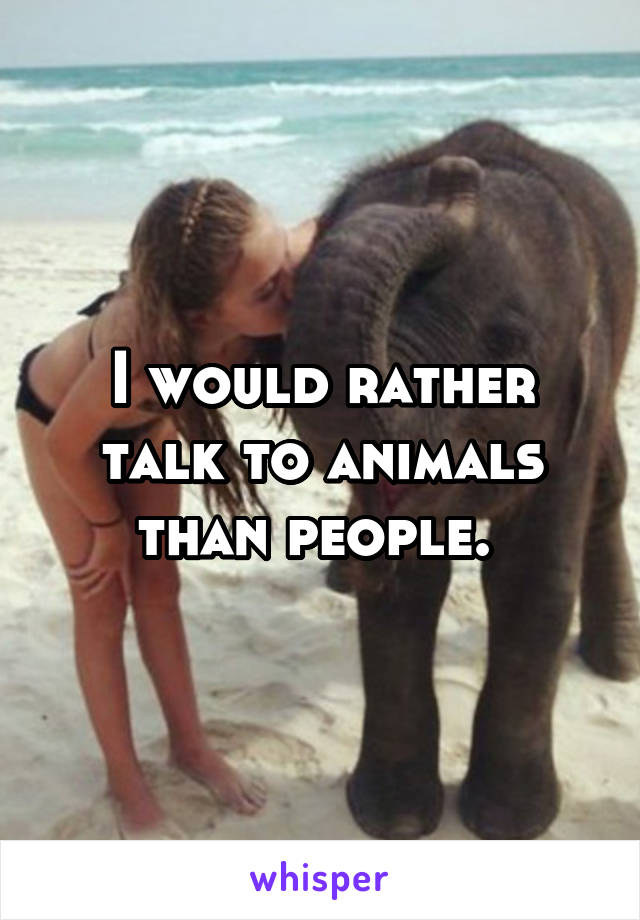 I would rather talk to animals than people.