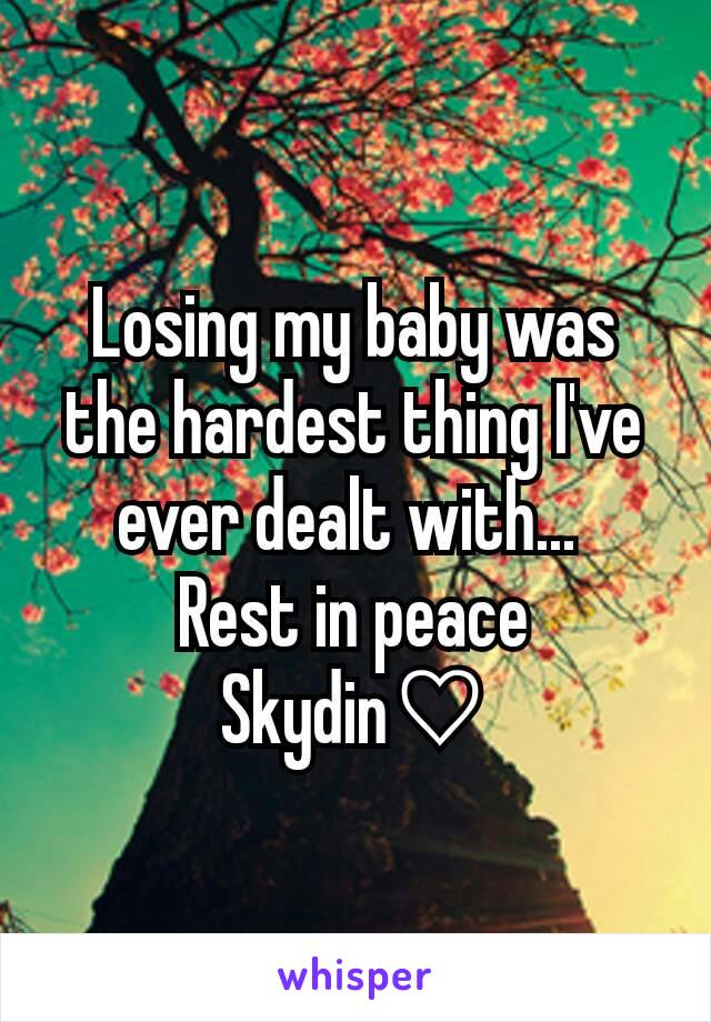 Losing my baby was the hardest thing I've ever dealt with...  Rest in peace Skydin♡
