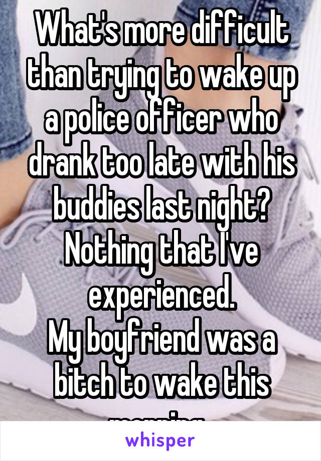 What's more difficult than trying to wake up a police officer who drank too late with his buddies last night? Nothing that I've experienced. My boyfriend was a bitch to wake this morning.