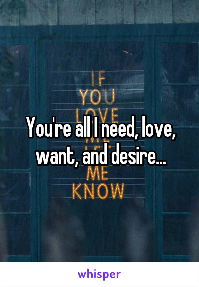 You're all I need, love, want, and desire...