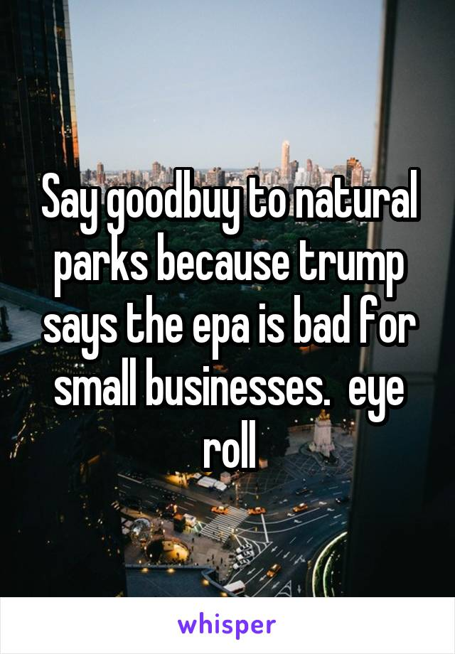 Say goodbuy to natural parks because trump says the epa is bad for small businesses.  eye roll