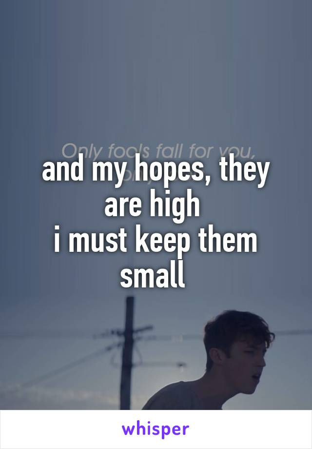 and my hopes, they are high  i must keep them small