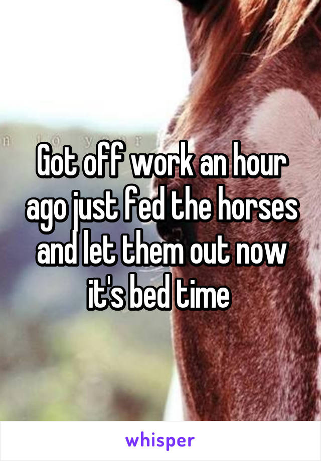 Got off work an hour ago just fed the horses and let them out now it's bed time