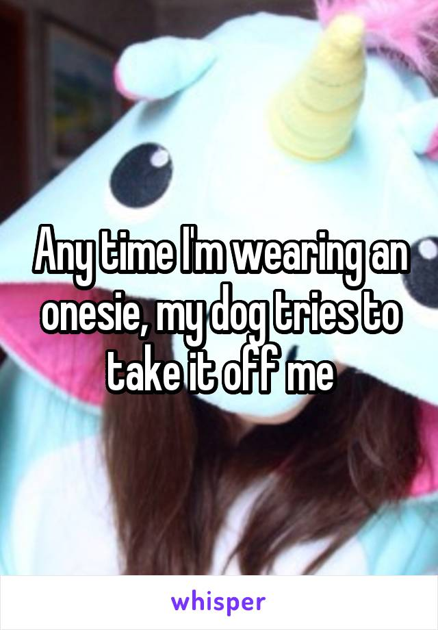 Any time I'm wearing an onesie, my dog tries to take it off me