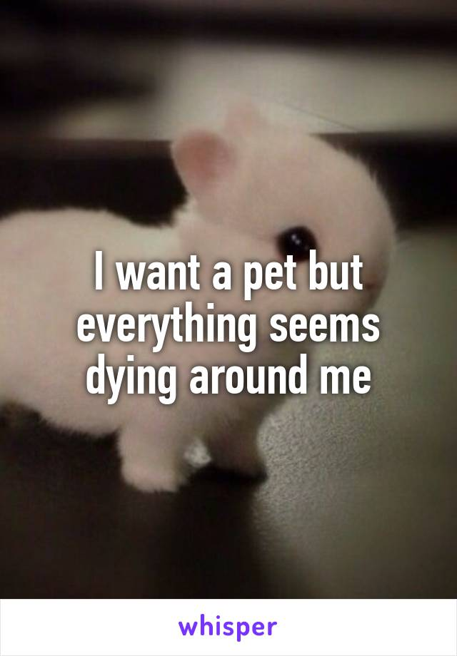 I want a pet but everything seems dying around me