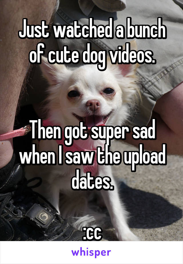 Just watched a bunch of cute dog videos.   Then got super sad when I saw the upload dates.  :cc