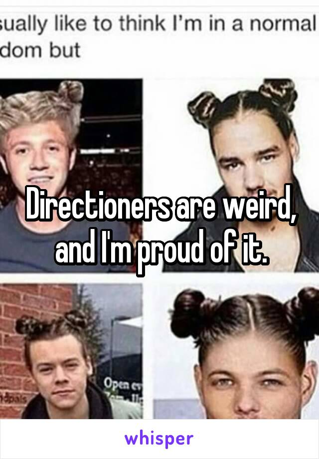 Directioners are weird, and I'm proud of it.