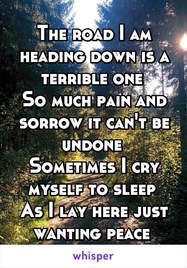 The road I am heading down is a terrible one  So much pain and sorrow it can't be undone  Sometimes I cry myself to sleep  As I lay here just wanting peace