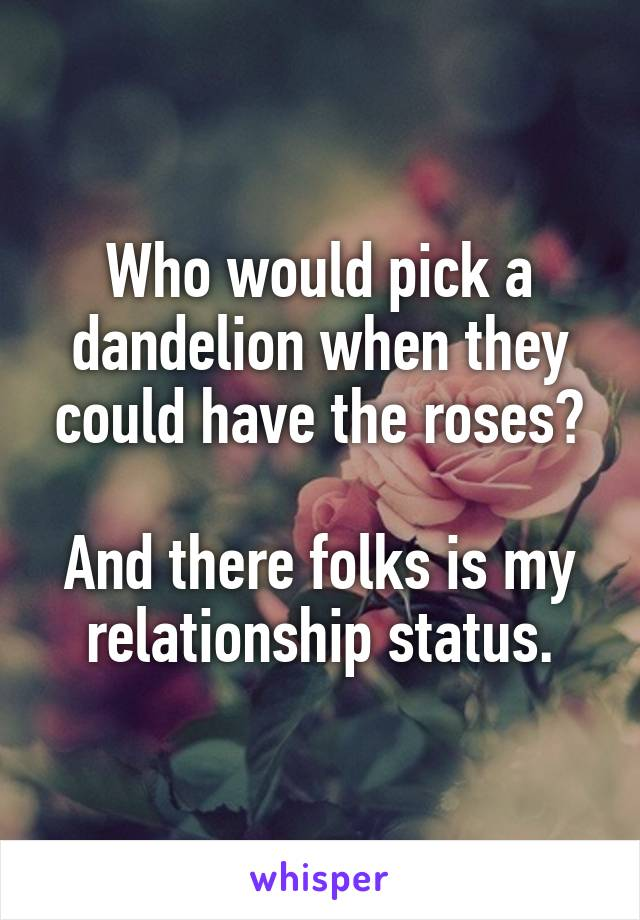 Who would pick a dandelion when they could have the roses?  And there folks is my relationship status.