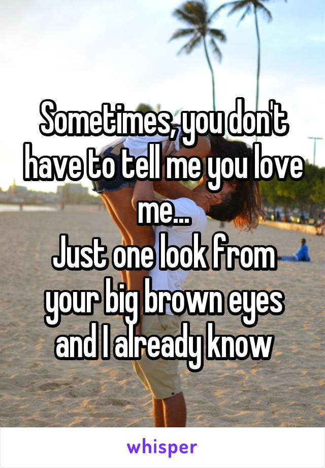 Sometimes, you don't have to tell me you love me... Just one look from your big brown eyes and I already know