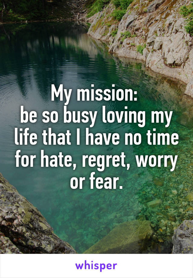 My mission:  be so busy loving my life that I have no time for hate, regret, worry or fear.