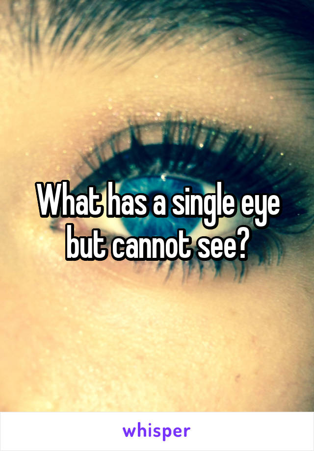 What has a single eye but cannot see?