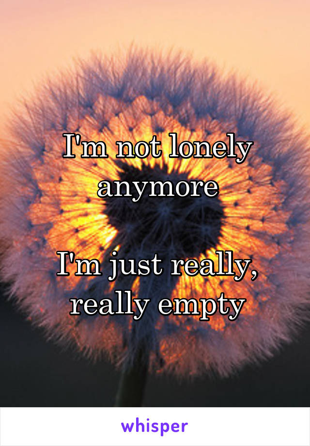 I'm not lonely anymore  I'm just really, really empty