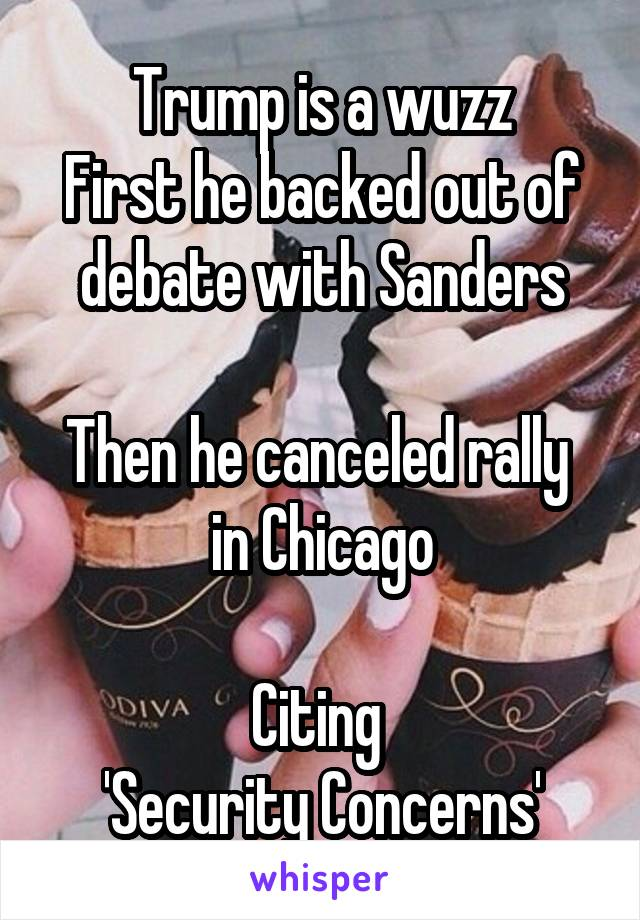 Trump is a wuzz First he backed out of debate with Sanders  Then he canceled rally  in Chicago  Citing  'Security Concerns'