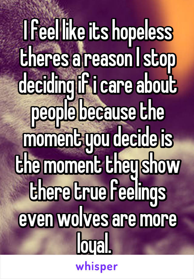 I feel like its hopeless theres a reason I stop deciding if i care about people because the moment you decide is the moment they show there true feelings even wolves are more loyal.