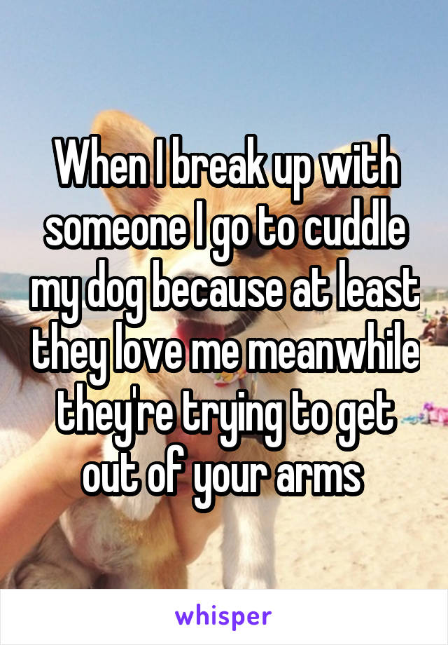 When I break up with someone I go to cuddle my dog because at least they love me meanwhile they're trying to get out of your arms