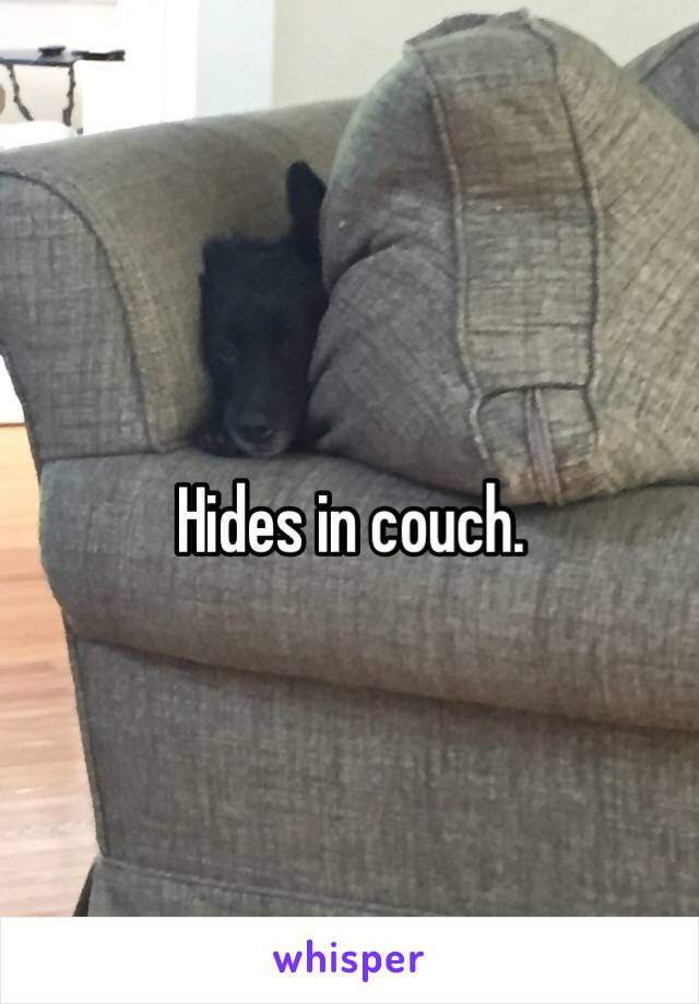 Hides in couch.