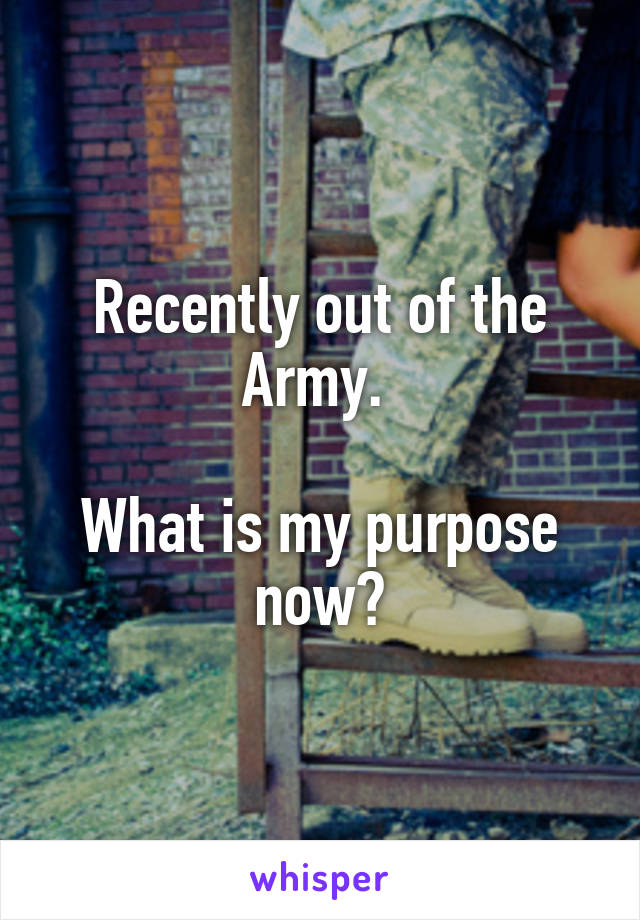 Recently out of the Army.   What is my purpose now?