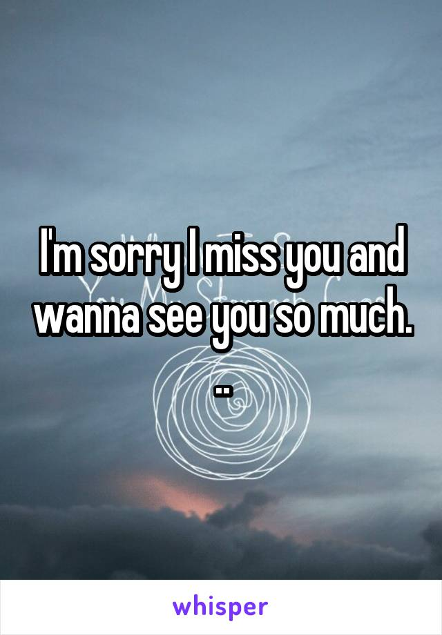 I'm sorry I miss you and wanna see you so much. ..