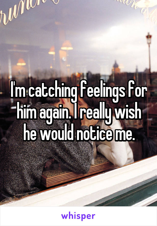 I'm catching feelings for him again. I really wish he would notice me.