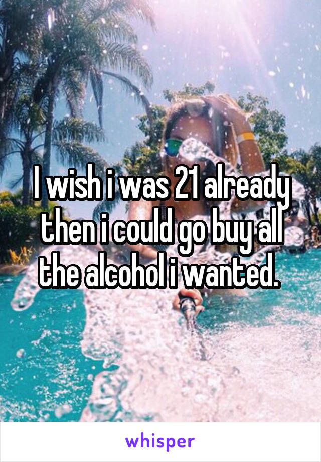 I wish i was 21 already then i could go buy all the alcohol i wanted.