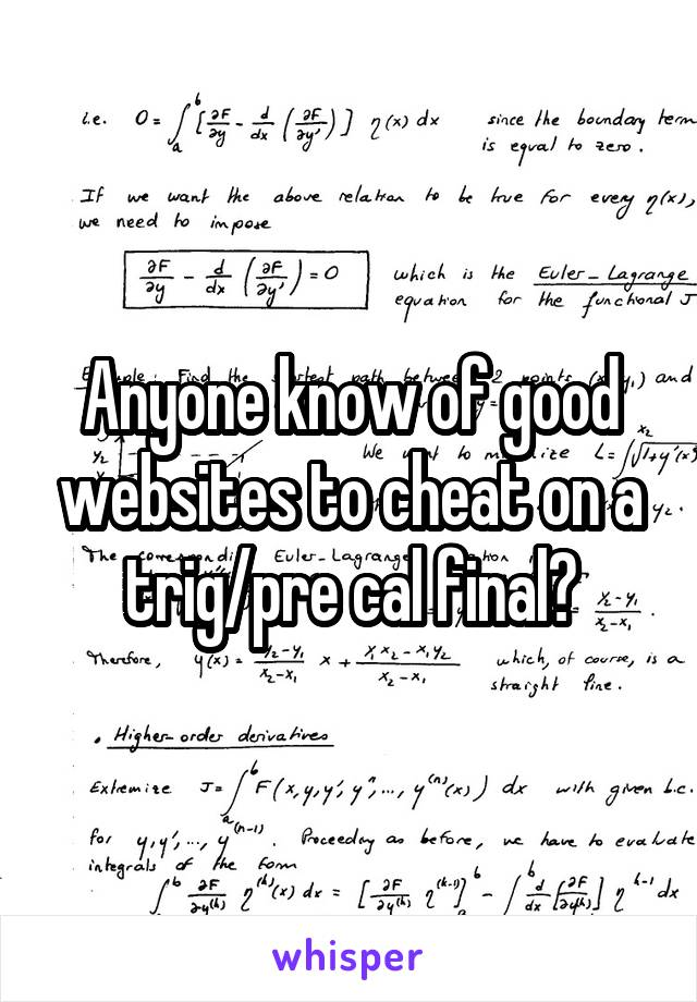 Anyone know of good websites to cheat on a trig/pre cal final?
